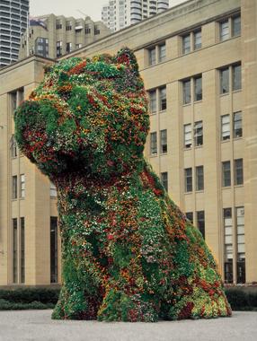 Jeff Koons. Puppy, Museum of Contemporary Art, Sydney, Australia, 1995-1996.