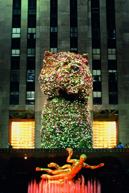 Jeff Koons. Puppy, Rockefeller Center, New York, 2000.