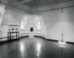 Jeff Koons. New Sculpture, Renaissance Society, University of Chicago, 1986.